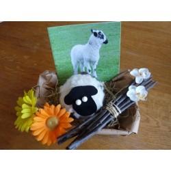 Rohwollelamm und Lammkarte mit Osterbotschaft im dekorativen Körbchen