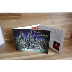 Das Licht in der Dunkelheit-Eine Weihnachtsgeschichte